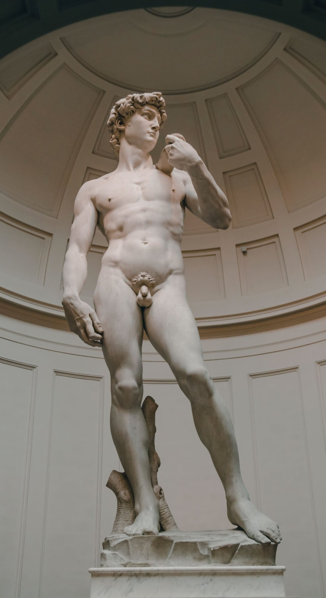Davide di Michelangelo